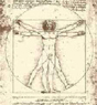 Da Vinci, Homem vitruviano